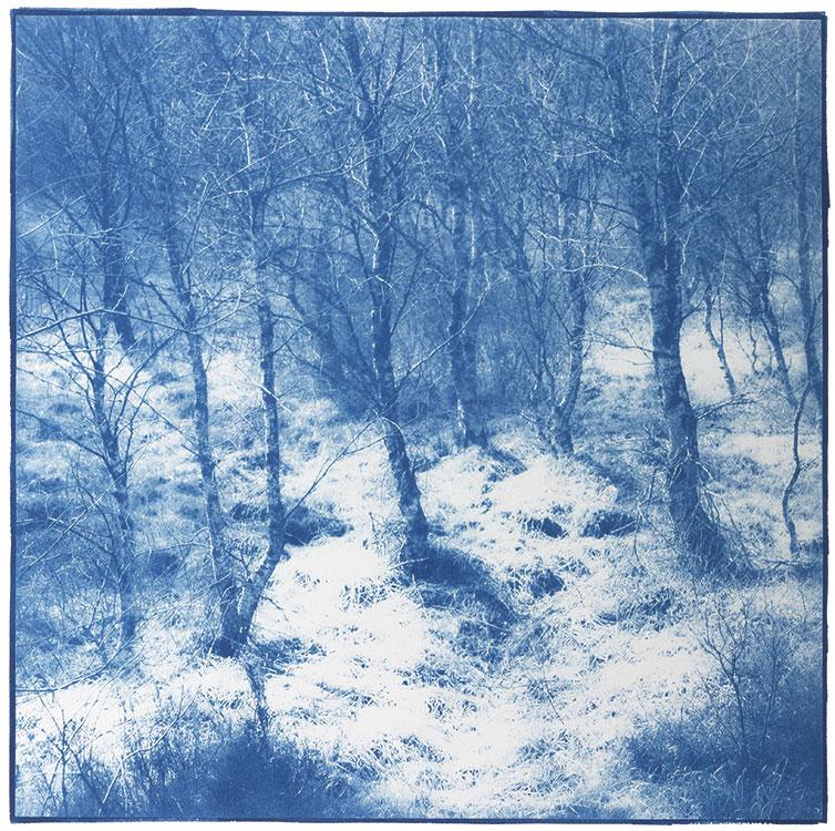 Moorland I, 2016, 32 x 32 cm