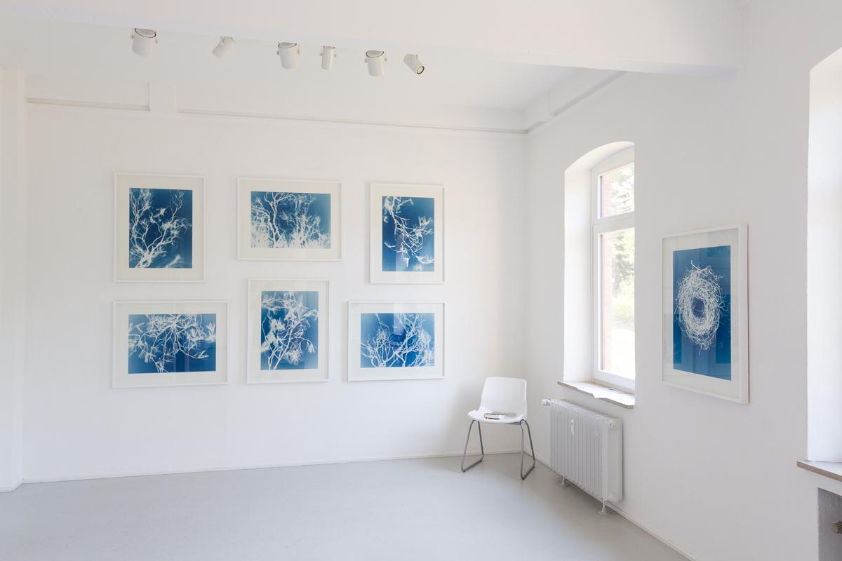 20190726_ChristineSteyer_Ausstellung-GAR_II_2019_0003